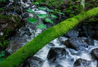 Rissla waterfalls Tero Hintsa