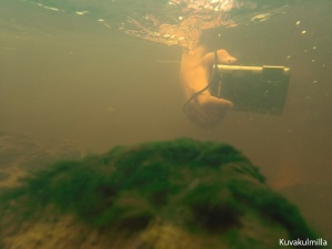 Ihodenjoessa kovassa virtauksessa ja sameassa vedessä kuvattu 4 vuotta vanha TG-610. Hyvin tarkensi näihin olosuhteisiin ja valovoima riittää päivällä matalassa vedessä.