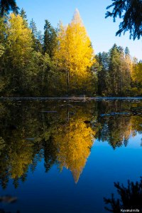 Ruska fall colours Tero Hintsa