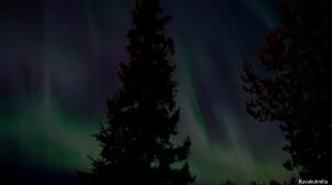 Revontulet Northern lights Tero Hintsa