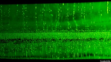 Laservalo jään läpi Tero Hintsa