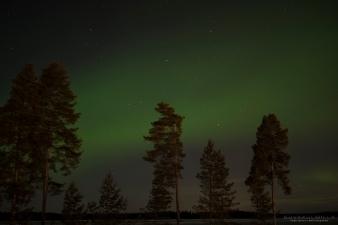 Revontulet Seinäjoki Tero Hintsa