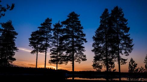 toimisto@vuokatinrinteet.fi