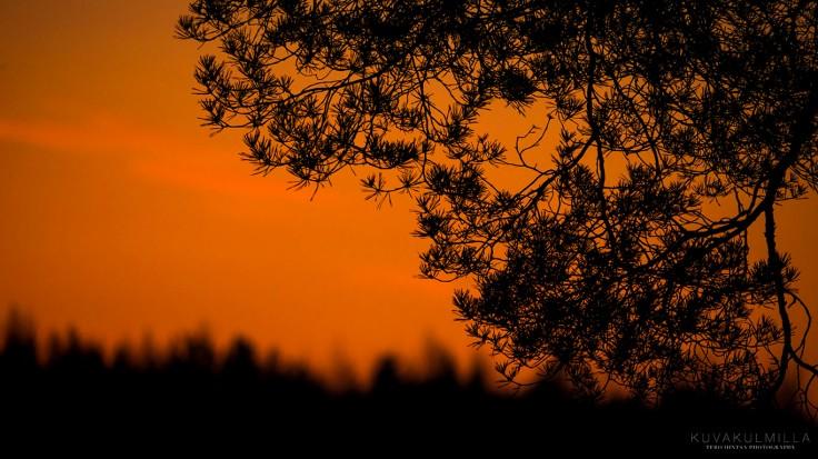 Auringonlasku 3.4.2015