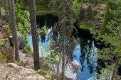 Karhunahas Petäjävesi Multia 1.6.2016 Tero Hintsa
