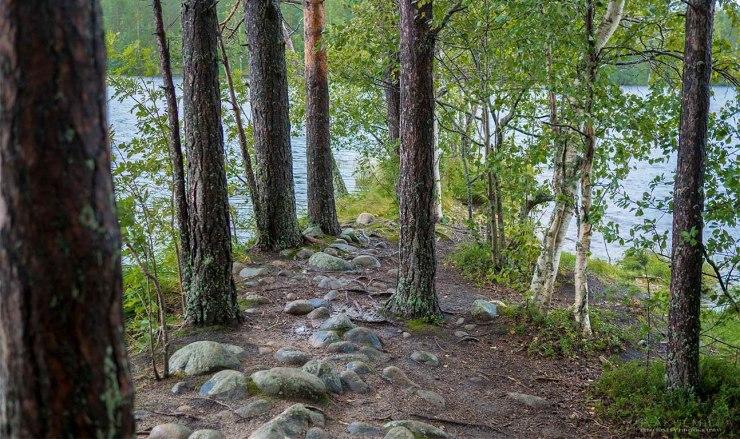 Leivonmäen kansallispuisto Kuvakulmilla Tero Hintsa