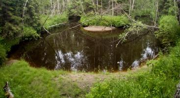 Kuninkaanjoki on aika-ajoin kuin serpentiinitie, suoria ei juuri ole.