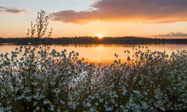 Auringonlasku 3.8.2017 Seinäjoen Kyrkösjärvellä.