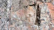Torisevan rotkojärven kallioseinän yksityiskohtia.