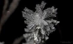 Yksittäinen lumihiutale taskulampun valossa.