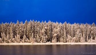 Talviaamuisin sininen hetki voi olla todella sininen. Valkoisen ja sinisen kontrasti on kaunis.