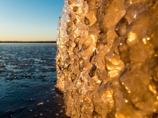 Talvimyrskyjen jälkeen kannattaa kuvaamaan lähteä heti. Jäätyneet rantakasvit ja kivet eivät säily kirkkaina montaa päivää. Kuvan kivi auringoslaskun värjäämänä.