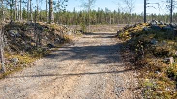 Paalijärven patikka-08